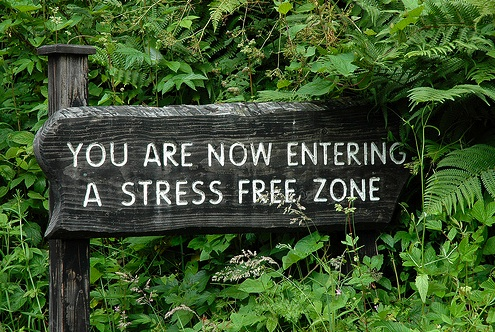 Willow Vietor Organizing home page - Now entering a stress free zone sign
